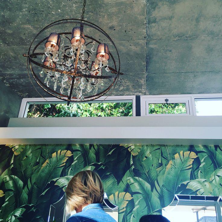 Love the light fitting-chandelier