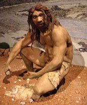 photo of a reconstruction of an adult male Homo heidelbergensis