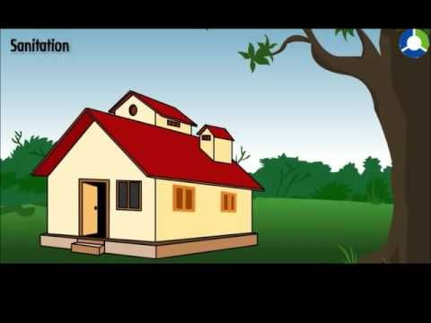 HOUSES AND THE ENVIRONMENT - YouTube