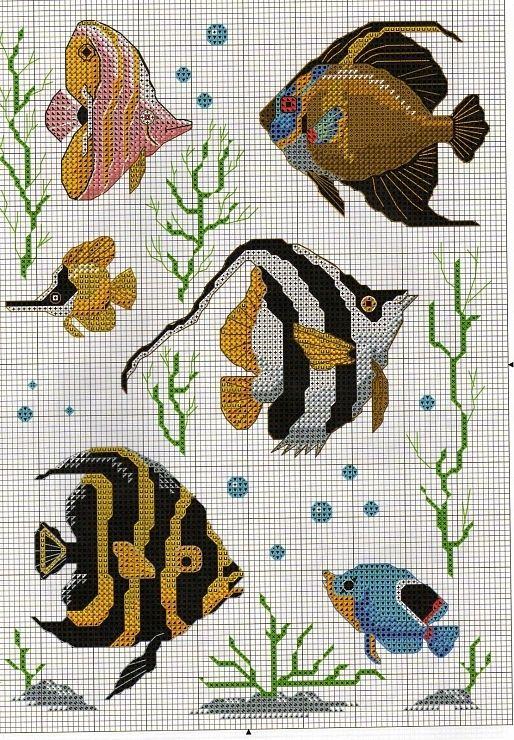 Gallery.ru / Фото #32 - 720 - Yra3raza fish