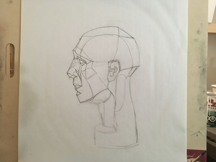 Planes of the head drawing by Aaron West
