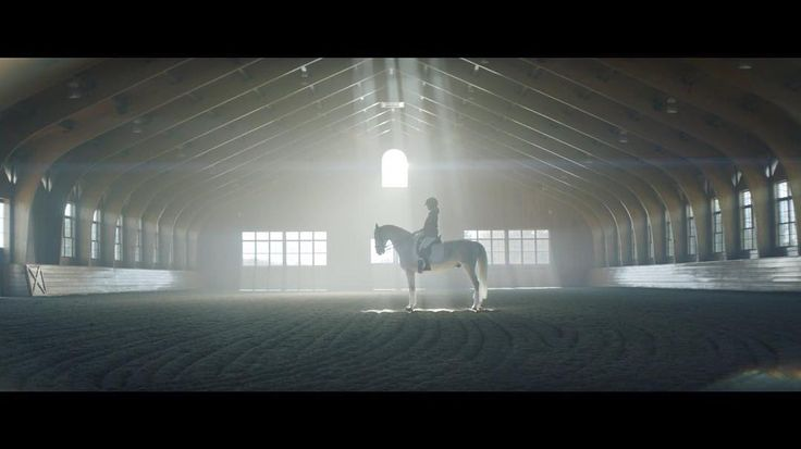 'Alexa Chung Dressage [Commercial 2017]': An elegant dressage video of Alexa Chung in a beautiful wooden space made by Lorin Askil from Collider. #alexachung #dressage #lorinaskill #collider #arcfilm #arcfilmtv #architecture #film #tv #video #architect #beauty #building #filmmaking #filmmaker #director #movie