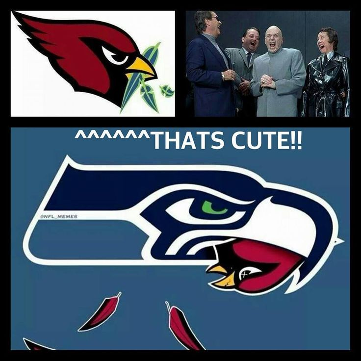 55 best seattle seahawks funny images on pinterest