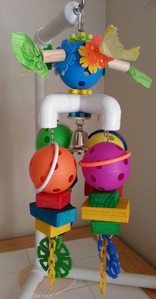 3 4 In Octagon Bird Toys : Best images about bird diy stuff on pinterest