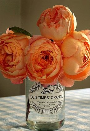 peonies come in orange? magnificent.. want big bunches to mix with my pink...