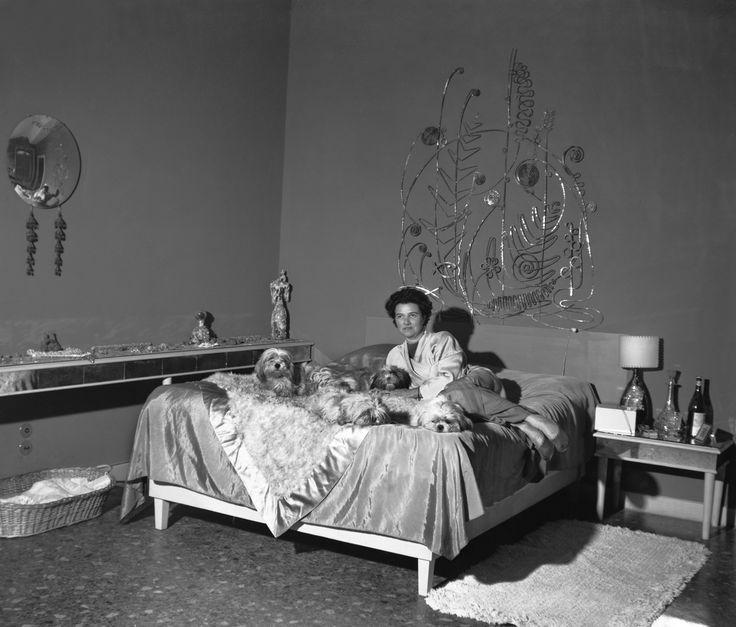 Oltre 25 fantastiche idee su camera da letto argento su pinterest - Un letto di leoni ...