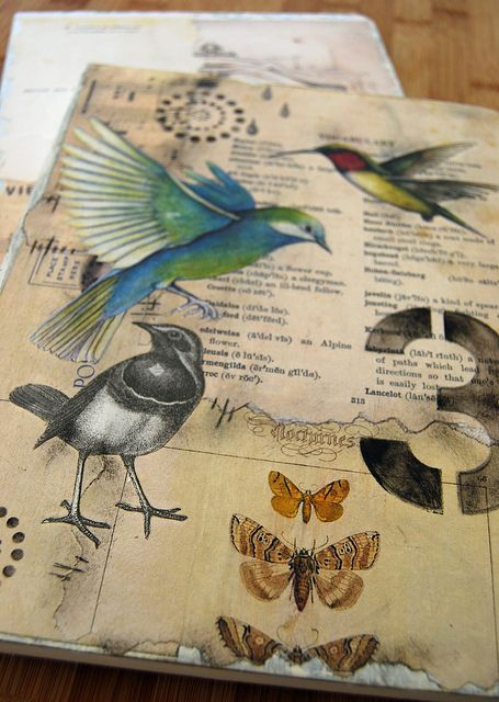 collage bird journal by Helen Wheeler-Shaw, via Flickr...love the combination of text, number, and picture/drawing