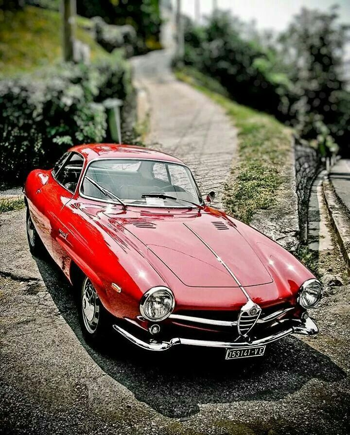 Alfa Romeo Giulietta SS #CarForever
