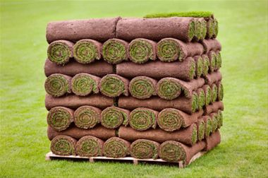 Step by step guide on how to lay turf