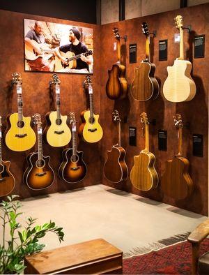 Schönheit von allen Seiten und vor allem im Klang: Taylor Gitarren bei session Walldorf