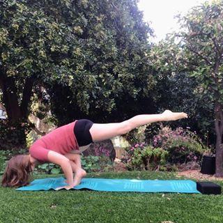 flying lizard variation yoga pose  photo instagram