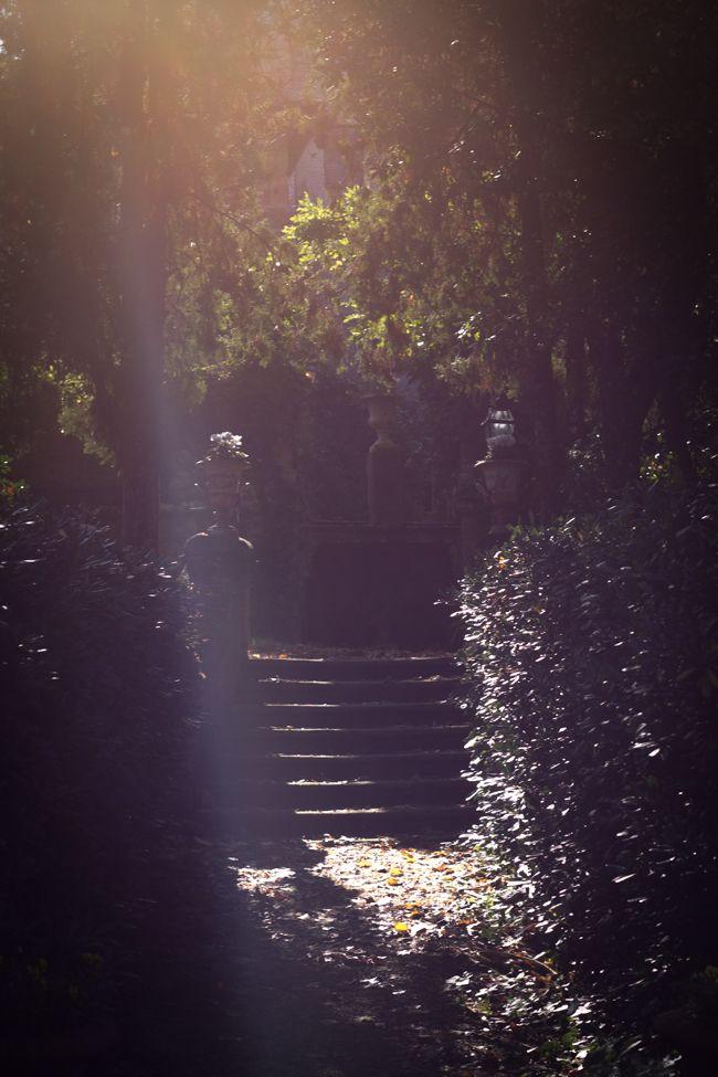 Quel giardino di ottobre – biancoantico blog