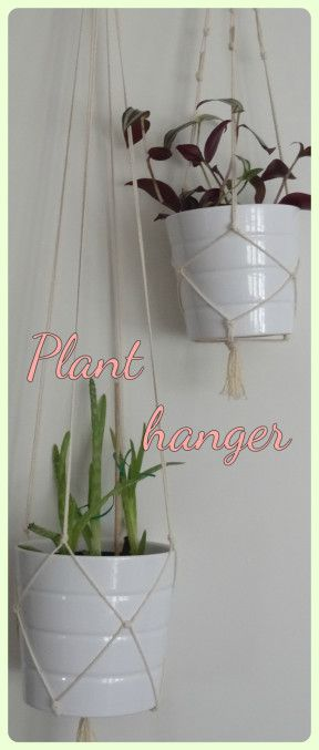 Simple DIY macramé plant hanger! Follow my blog for more DIY's and cat stuff!