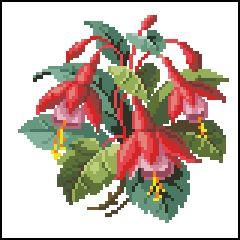 fushia+bouquet.jpg (240×240)
