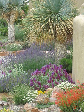David Salmanu0027s Santa Fe Garden.   Google Search