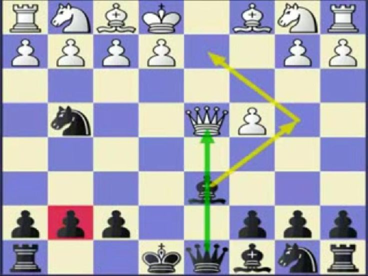 24 best chess players images on Pinterest Chess players, Chess - chess score sheet