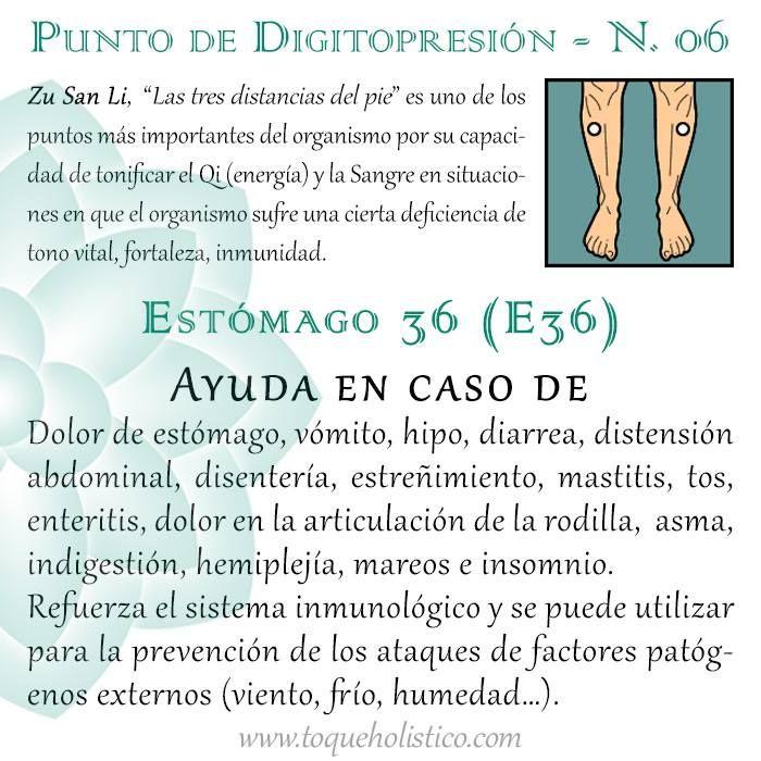 """Zu San Li, """"Las tres distancias del pie"""" es uno de los puntos más importantes del organismo por su capacidad de tonificar el Qi (energía) y la Sangre en situaciones en que el organismo sufre una cierta deficiencia de tono vital, fortaleza, inmunidad."""