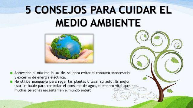 Pin De Bety Huaman Lopez En Cuidado Del Medio Ambiente Medio Ambiente Cuidado Del Medio Ambiente Actividades