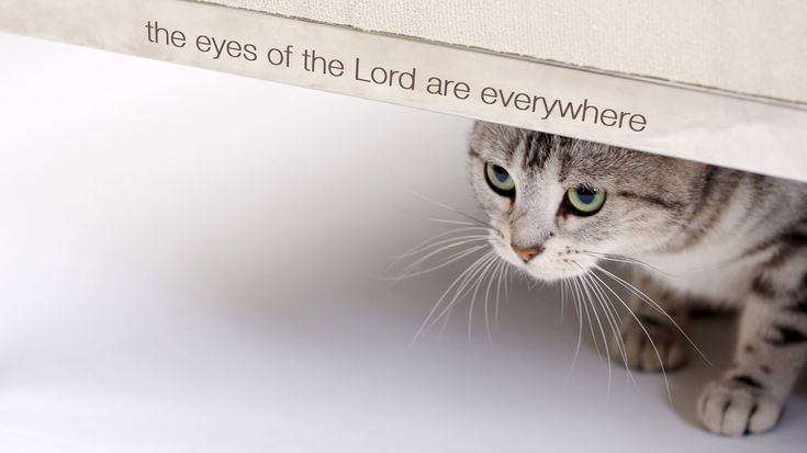 THE EYES OF THE LORD ARE EVERYWHERE