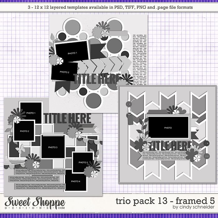 Cindy's Layered Templates - Trio Pack 13: Framed 5 by Cindy Schneider