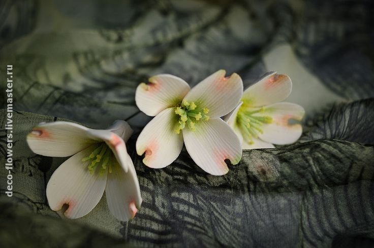 Цветки кизила на шпильках - Надежда (deco-flowers) - Ярмарка Мастеров http://www.livemaster.ru/item/1287367-svadebnyj-salon-tsvetki-kizila-na-shpilkah