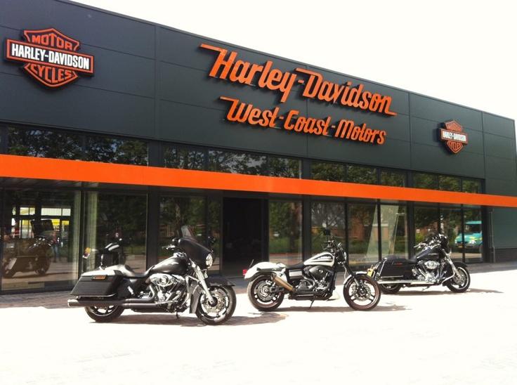 New Harley store in Nl: Motors Harley Davidson, Harley Stores