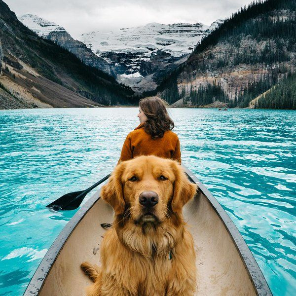 Canadian canoeing adventure with dog