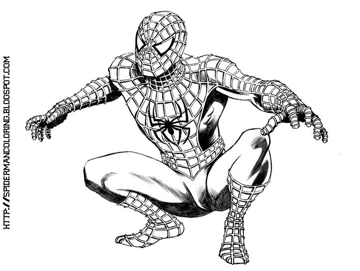 64 best images about coloring pages on pinterest beauty for Spiderman 3 coloring pages