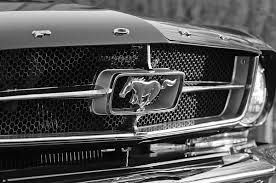 1965 Mustang Grill Maintenance/restoration of old/vintage vehicles: the material for new cogs/casters/gears/pads could be cast polyamide which I (Cast polyamide) can produce. My contact: tatjana.alic@windowslive.com