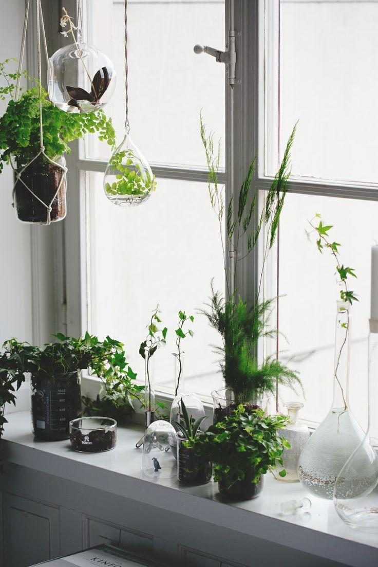 Het decoreren en afmaken van je huis is eigenlijk het aller leukste. Als de basis staat, kun je nog super veel leuke dingen toevoegen en alles gezellig aankleden. Je kunt nu echt je eigen stijl toevoegen. Planten zijn eigenlijk heel erg belangrijk bij een inrichting. Het zorgt er voor dat je huis leeft. Kleine plantjes…