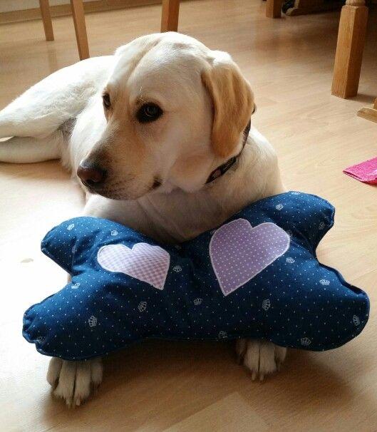 Knochen-Kissen genäht für meinen Hund Josie :-) * Dog-Pillow Bone for Josie Lab Sewing