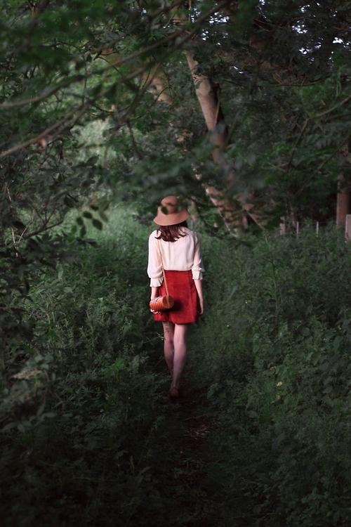 Through The Wilderness •Mr Fox
