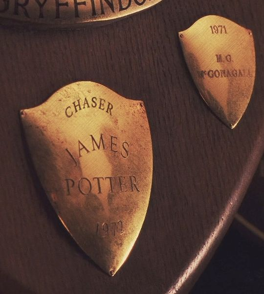 """""""You play as good as your father did, Harry."""" - Sirius Black McGonagall is on there too!"""