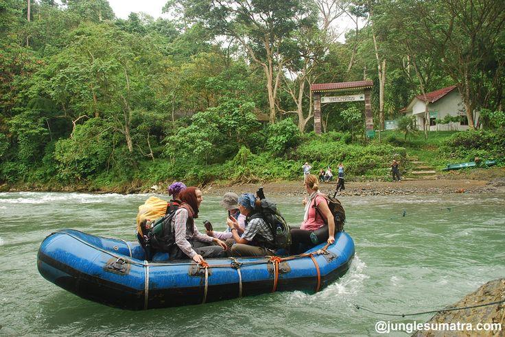 Sumatra Jungle River | This Trip Combination Jungle and River | Sumatran Orangutan + River Rafting. (www.junglesumatra.com)