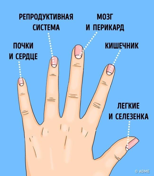 13 проблем со здоровьем, о которых предупреждают лунки на ногтях...