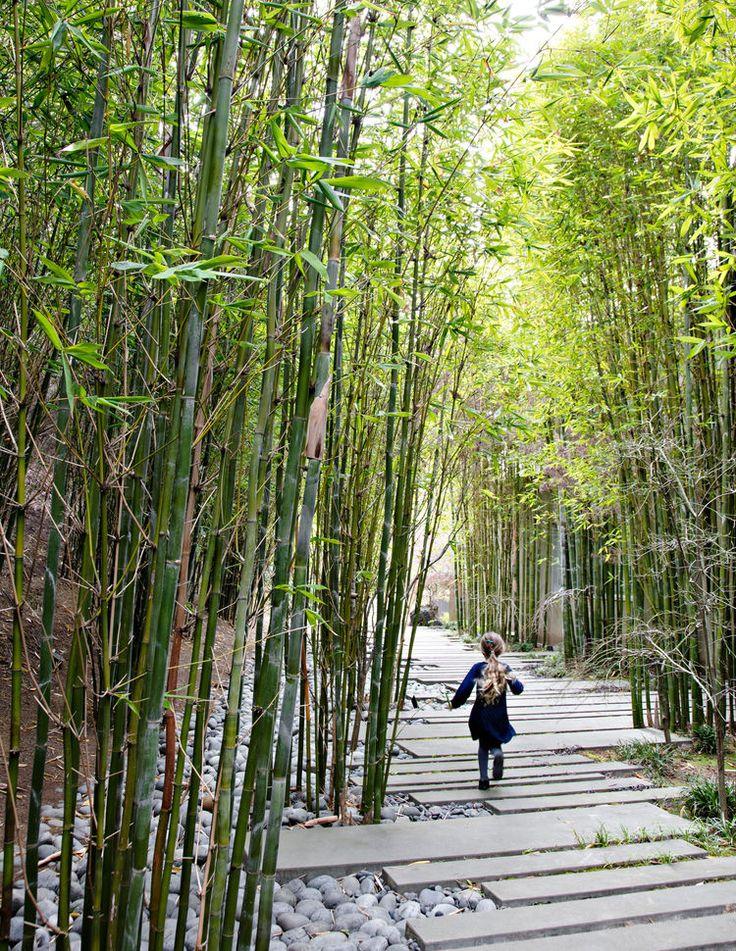 576 best 園藝 images on Pinterest | Japanese gardens, Zen gardens ...