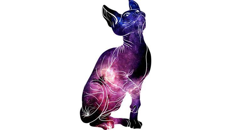 cat universe is a T Shirt designed by artofkaan to illustrate your life and is available at Design By Humans