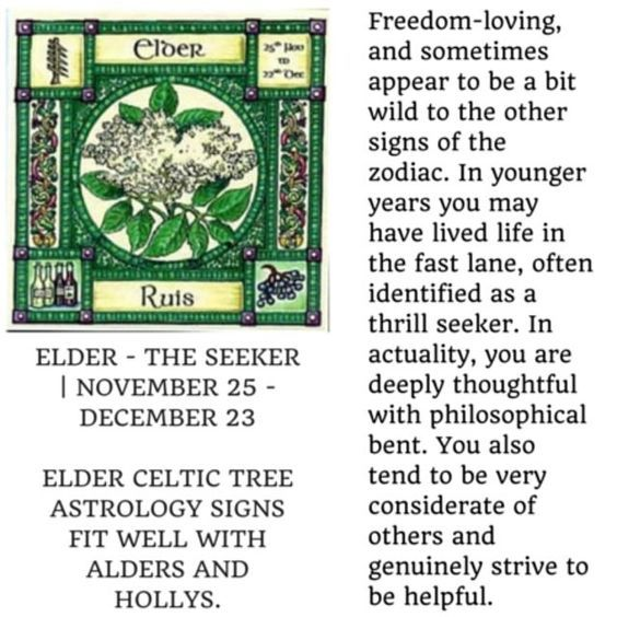 celtic astrology elder