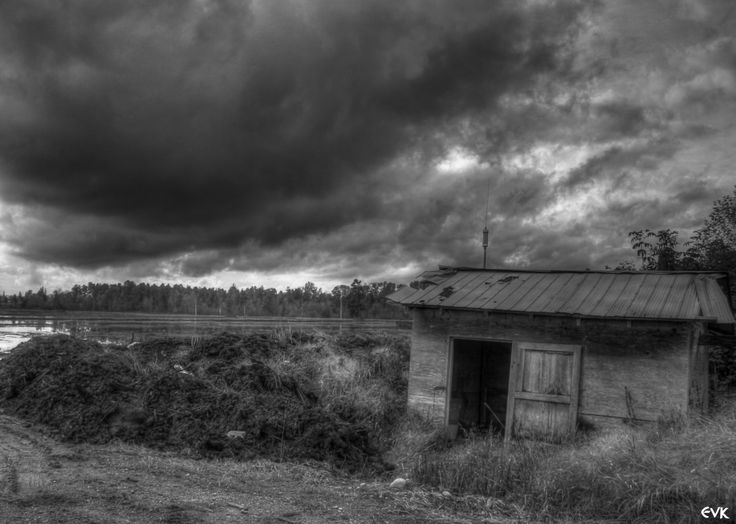 This white and black photo drove  my attention because of its composition. The old house is located in the third inferior cuadrant, leaving place for the background to its left, which is covered by the land and the clouds in the sky. I think it is a perfect photo also because it is demonstrating that the inclement of the wheather could have done this place abandoned.