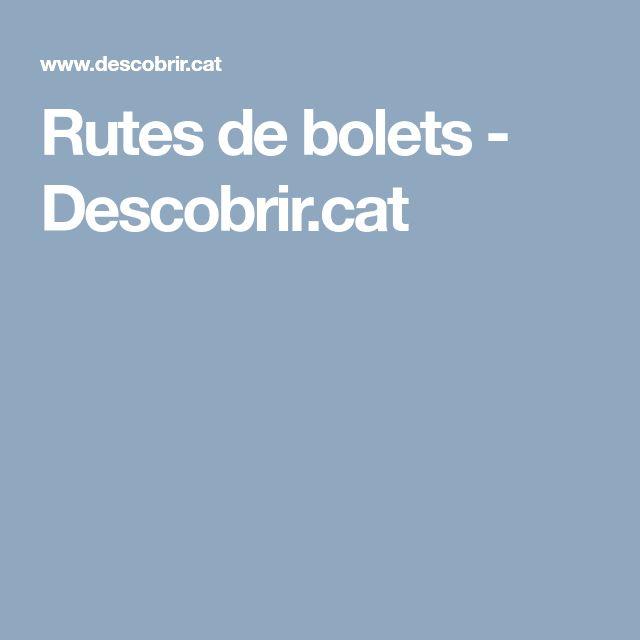 Rutes de bolets - Descobrir.cat