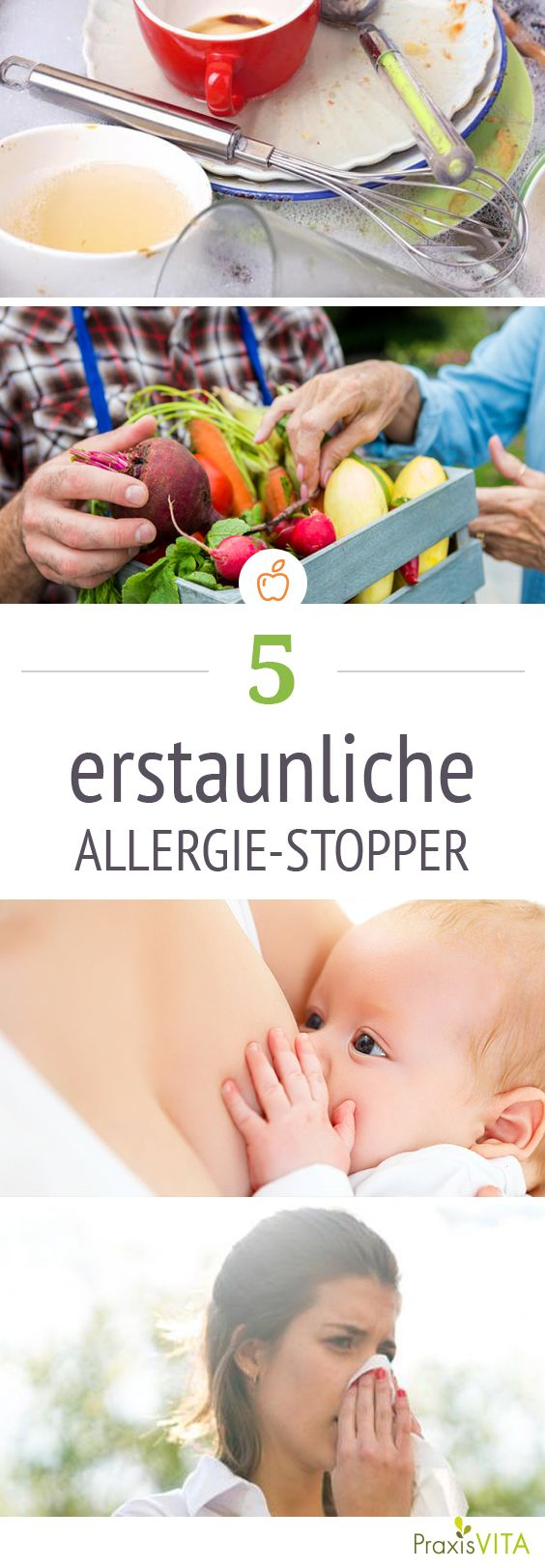 Und das soll gesund sein? Ja! Handgereinigtes Geschirr schützt Kinder vor Allergien, zeigt eine neue Studie.