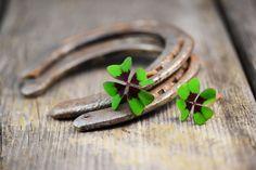 Amuletos para atraer Abundancia económica: ¡Conoce cual es el ideal para ti!