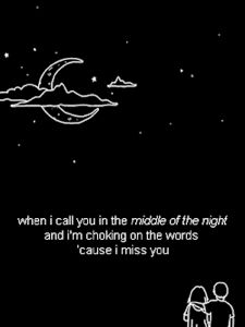 Middle Of The Night-The Vamps and Martin Jensen