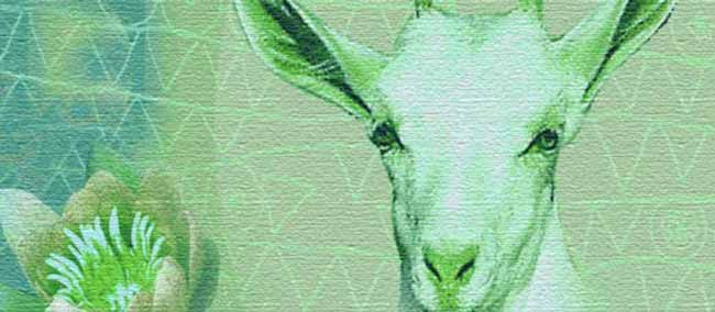 Your free monthly horoscope. A wry look at what Capricorn can expect in June. What the full and new moon mean for Capricorn & love Horoscope.