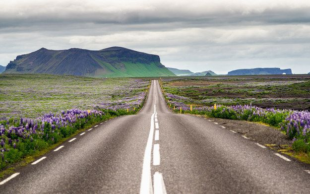 Sometimes they even build roads around places where elves are said to live. | 32 Reasons Why Iceland Is The Best Country Ever