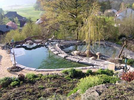 43 Best Bionova Natural Pools Images On Pinterest Natural Pools Natural Swimming Pools And Ponds
