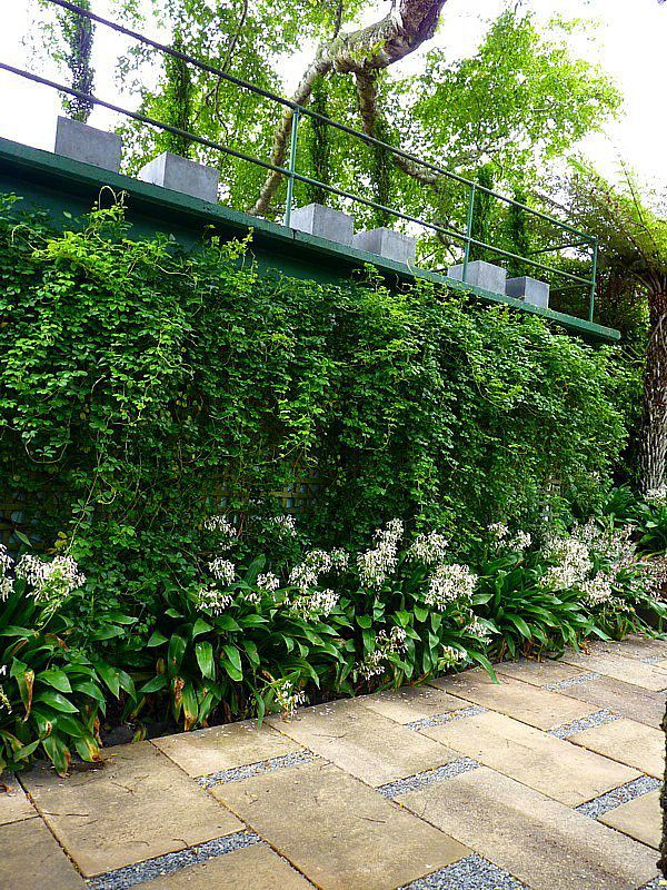851 Best Images About Green Walls / Vertical Gardening/ Roof