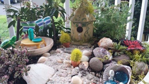 Key West Backyard Ideas : Key West inspired fairy garden Complete with sphagnum moss, oyster
