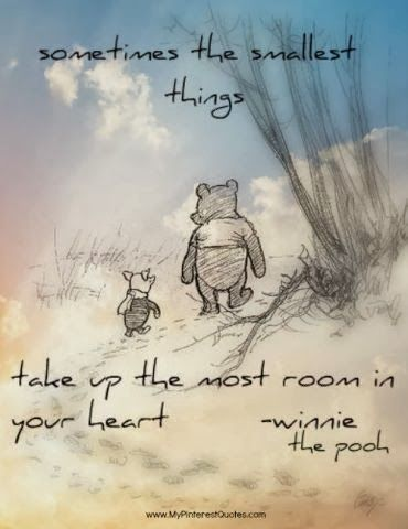 SOMETIMES THE SMALLEST THINGS TAKE UP THE MOST ROOM IN YOUR HEART - Winnie the Pooh