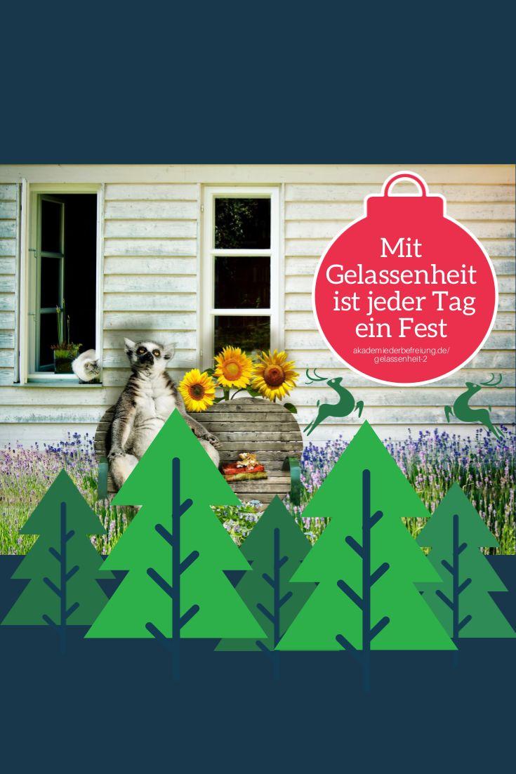 #Gelassenheit, die VideoPräsentation. Zu Weihnachten 50% günstiger - beschenke dich jetzt: http://akademiederbefreiung.de/gelassenheit-2/